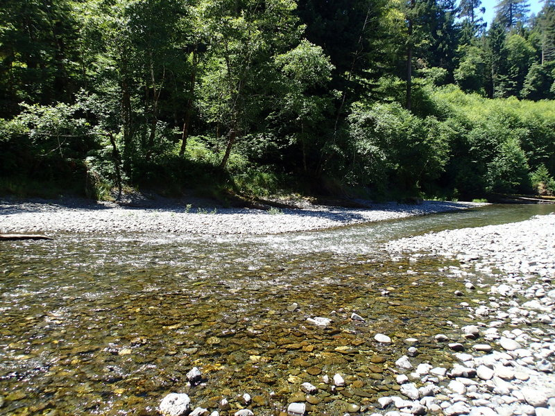 Looking back at McDonald Creek.  \Exit the river soon after this