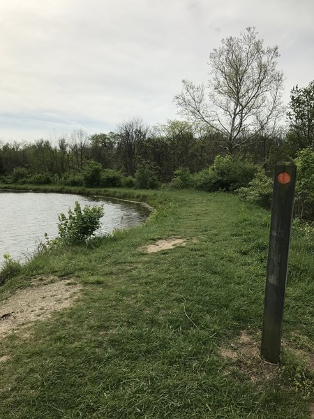 A peek at a trail marker as the trail winds around the bottom of the fishing ponds and heads toward the hidden prairies behind the ponds. Note: Good fishing spot here on the picnic tables