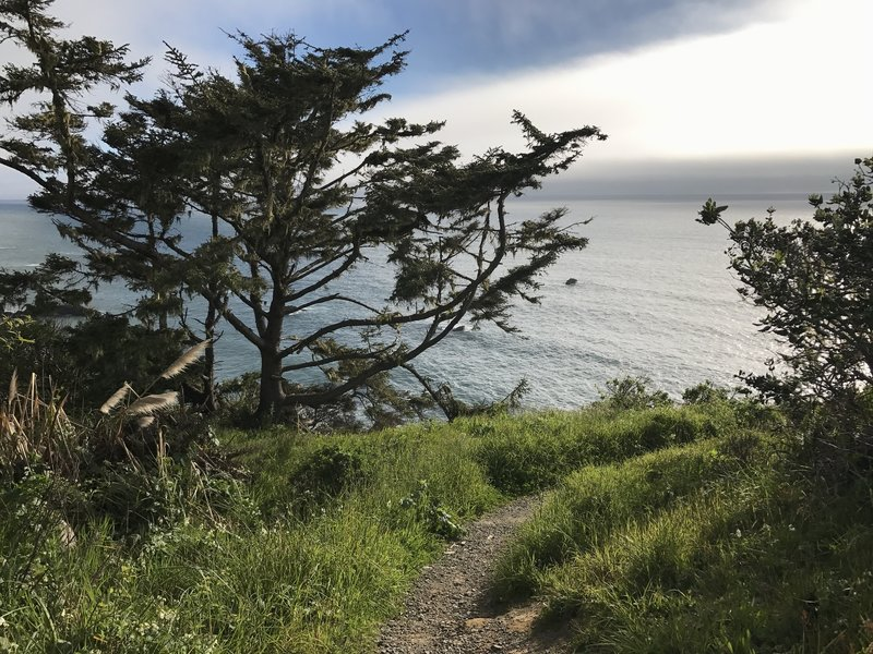 Palmers Point - Patrick's Point State Park.