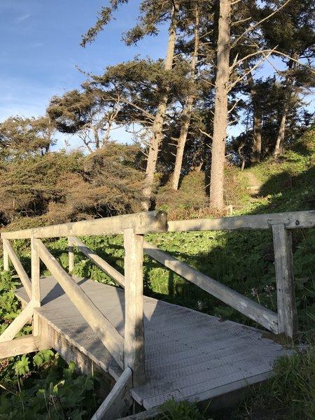 A bridge on Mussel Rocks Trail.