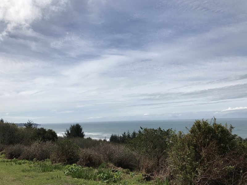 View of the Pacific Ocean and Big Lagoon area.