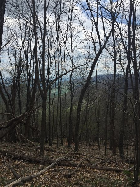 View from the Stony Mountain Trail.