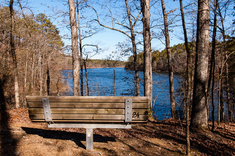 A bench along the Lake Ouachita Vista Trail overlooks Lake Ouachita, AR.