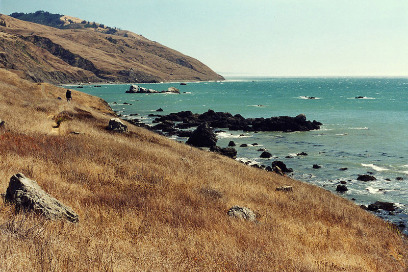 Traveling the Lost Coast Trail in October brings golden grasses and wonderful temperatures.