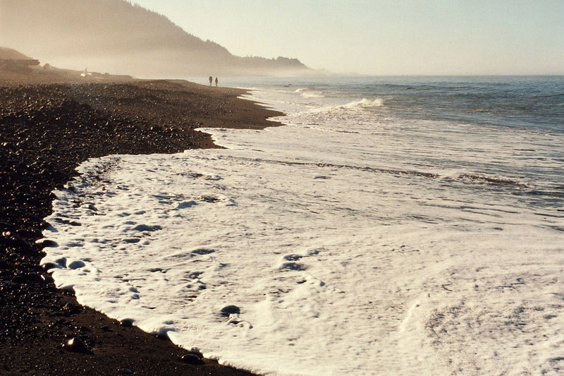 A misty morning greets backpackers along the Lost Coast Trail.