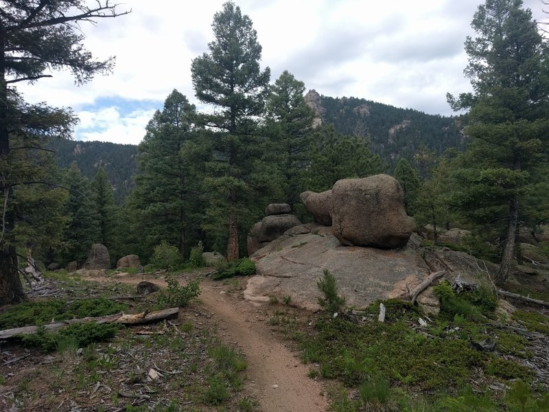 Lots of cool rock outcroppings are just off the tread along Little Scraggy Trail.