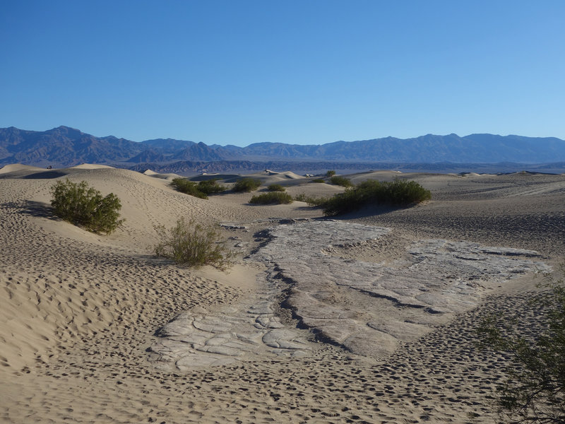 Sandstone makes the base of the Mesquite Sand Dunes.