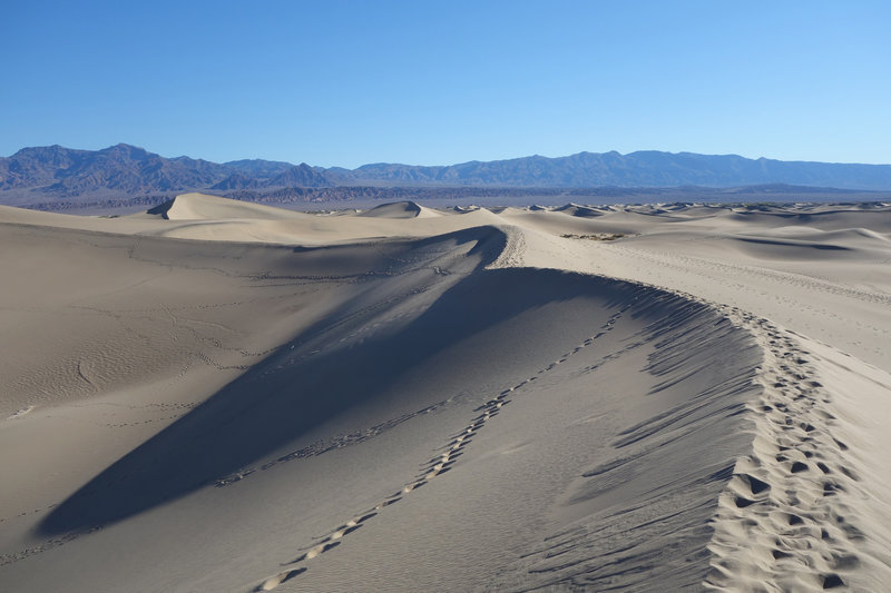 Shadows make a last stand at Mesquite Sand Dunes.