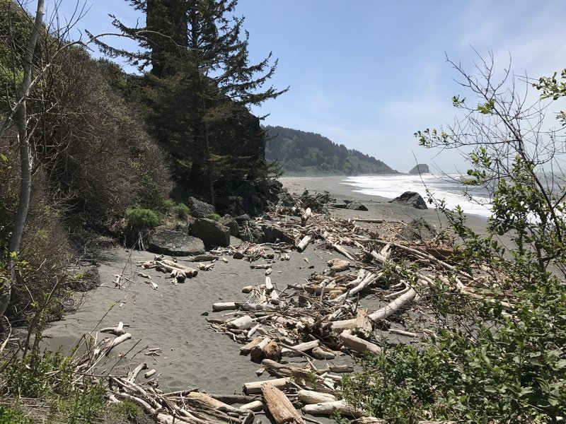 Klamath Beach is home to just a few pieces of driftwood.