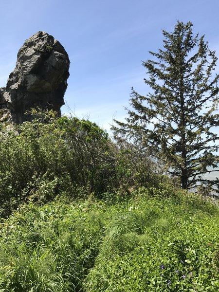 Interesting rocks stand above Klamath Beach.