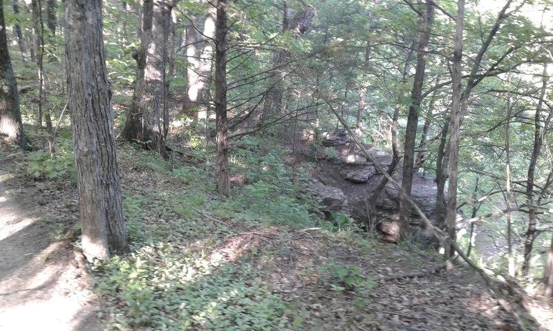 Along the ridge, you can enjoy fleeting glimpses of Gans Creek.