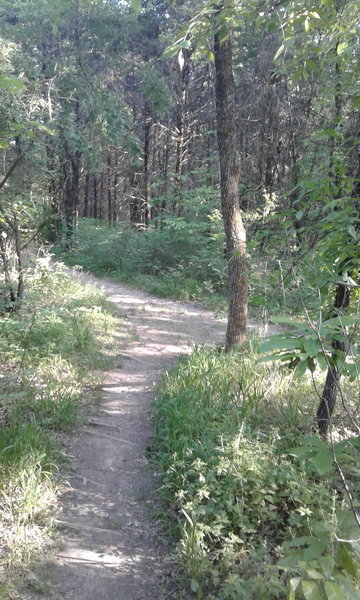 The trail makes a sharp right and follows blazes with the number three.