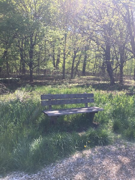 A lovely bench makes a great spot to take a break or pause to enjoy the scenery.