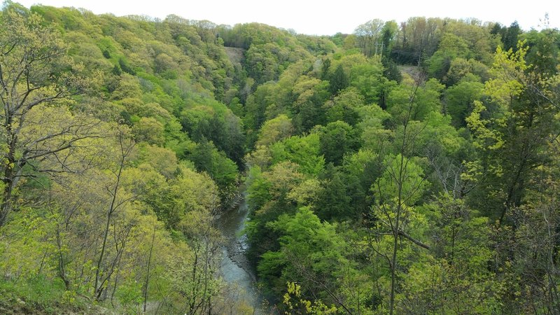 Enjoy a great view down into the Gorge at Fourmile Creek.