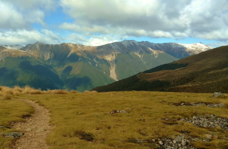 The northern end of the Southern Alps unfold to the south (right) when seen from Paddy's Track.
