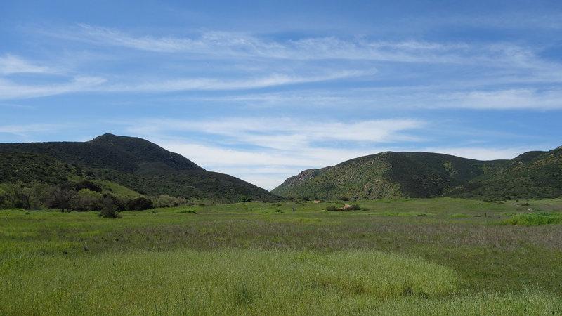 Enjoy verdant views in Mission Trails Regional Park.