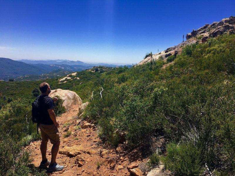A hiker looks off toward the ocean.