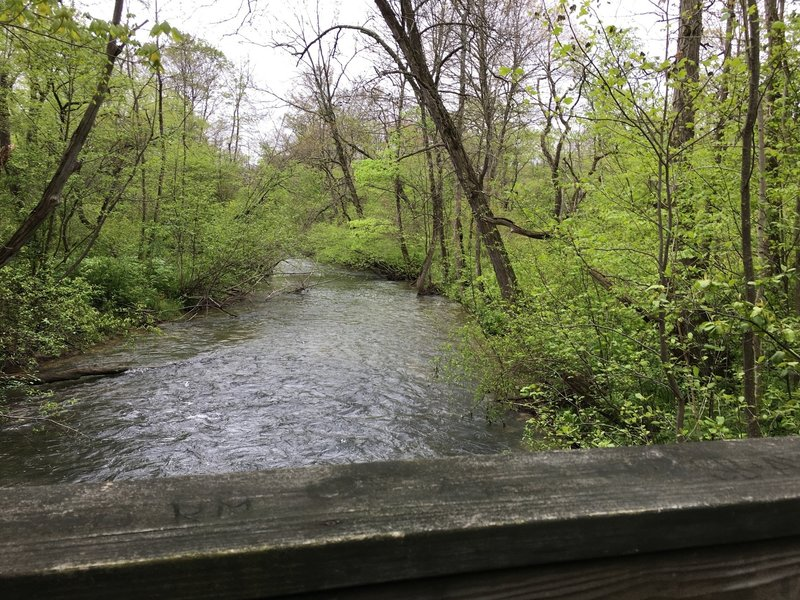 Indian Creek is beautiful in the springtime.