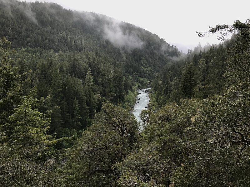 Experience the flowing South Fork Smith River from high up on the Craigs Creek Trail.