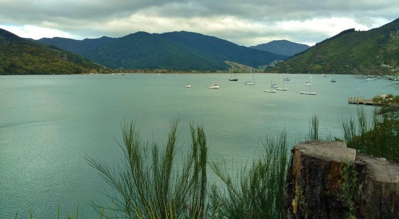 Boats can be seen moored offshore in Queen Charlotte Sound from the Queen Charlotte Track.