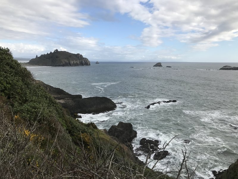 You can glimpse a view of Trinidad Head from the Elk Head Trail.