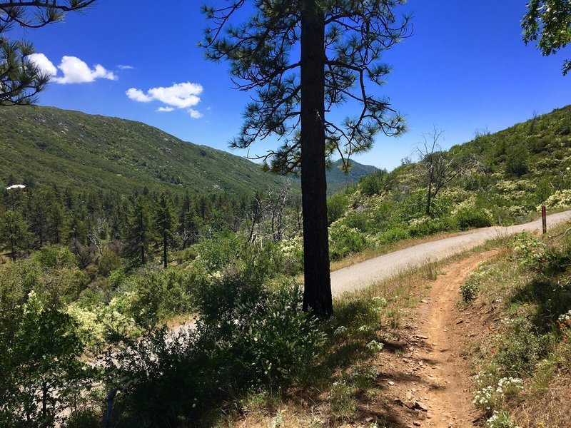 Crossing Pine Creek Road awards gorgeous views of the surrounding hills.
