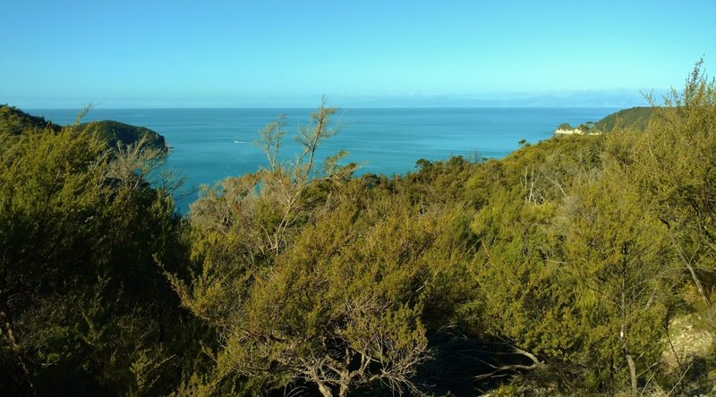 Looking east from the Abel Tasman Track above Observation Beach, enjoy a stunning view of Tasman Bay.