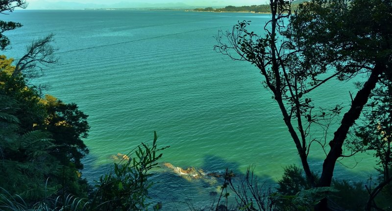 The turquoise waters of Coquille Bay shine from the Abel Tasman Track.