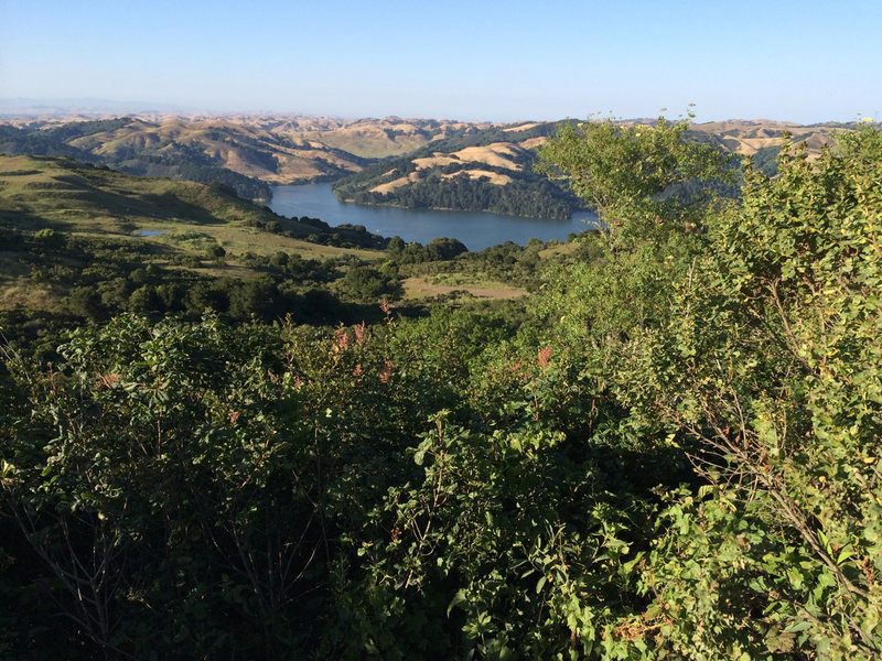 Enjoy a great view of San Pablo Dam from the Peace Circle.
