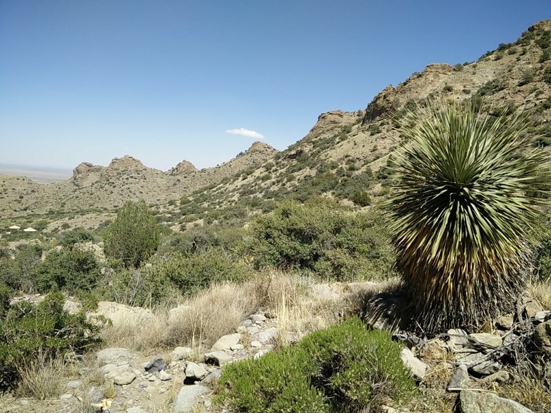 The scenery is beautiful on the south side of the canyon.