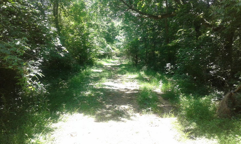 This is the beginning of the northern part of the trail.