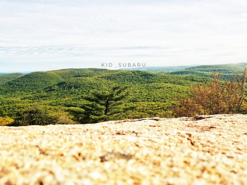 Enjoy beautiful views from the top of Bear Mountain.