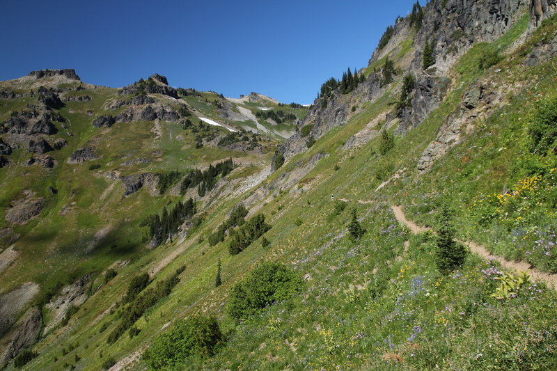 Climb through verdant meadows to Jordan Basin.