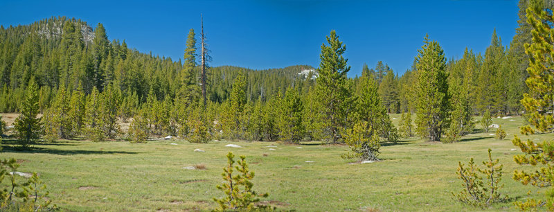 Long Meadow is quite beautiful.