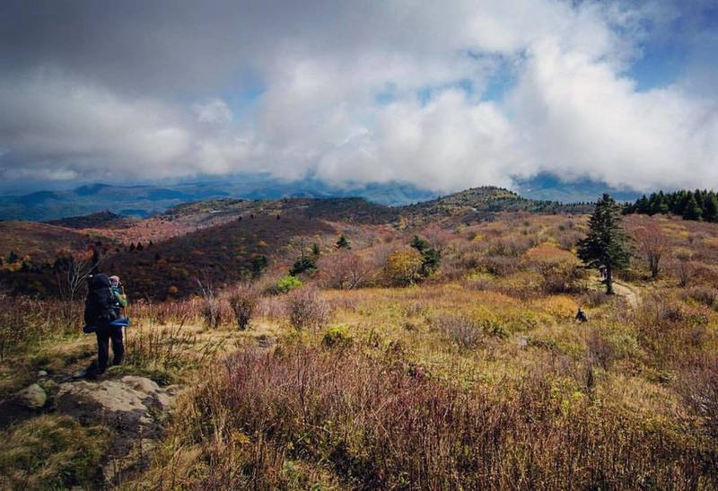 Get lost on the Art Loeb Trail.