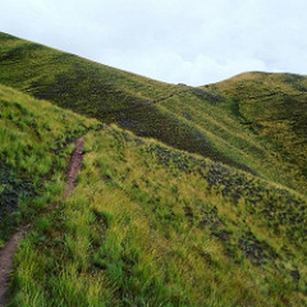 The first part of the Huchuy Qosqo Trail looks like this.