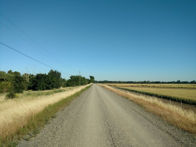 The levee access road is buffed smooth.