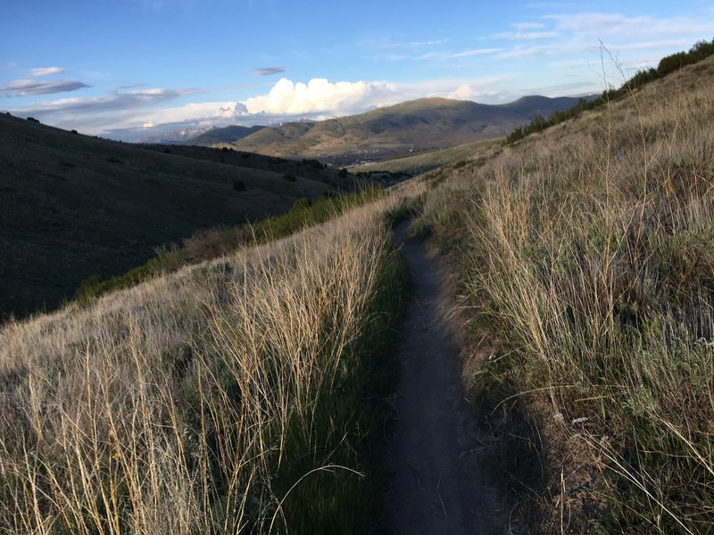 You can catch a glimpse of Pocatello down below along the pleasant Eagle trail.