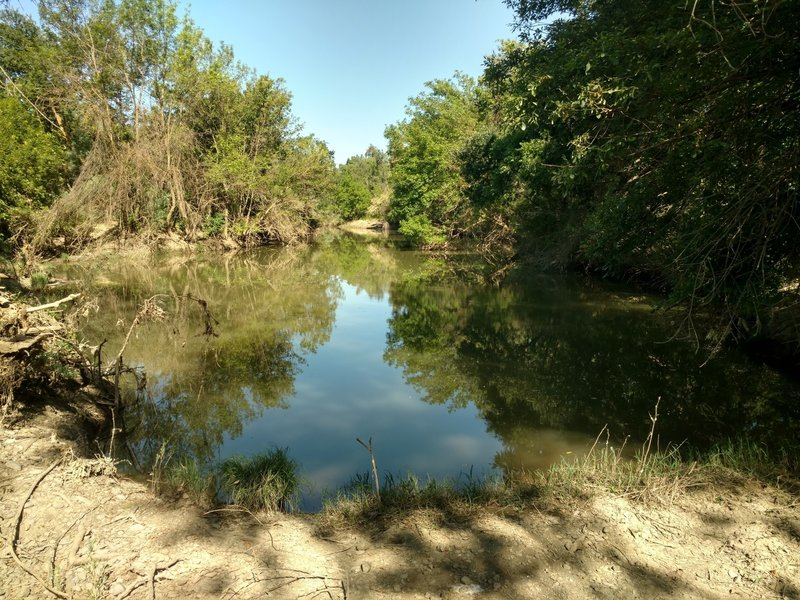 Bring your rod to this small fishing spot along Putah Creek.