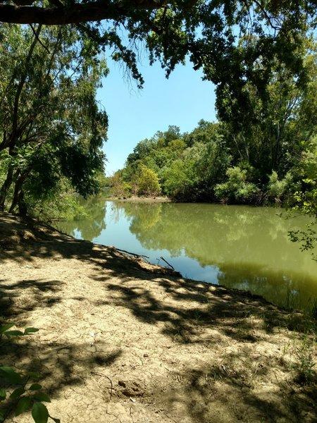 Putah Creek has a few great swimming holes.