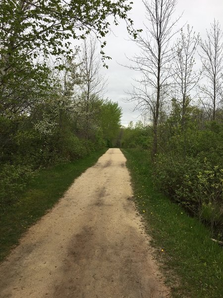 The Lions Den Trail is buffed and easy to navigate.