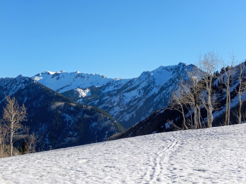 Looking south across Big Cottonwood Canyon in May brings beautiful snowy views.