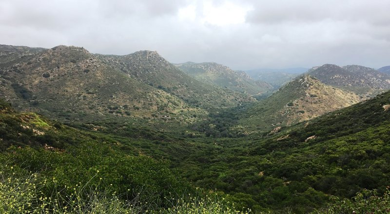Looking back down onto the Espinosa Trail.