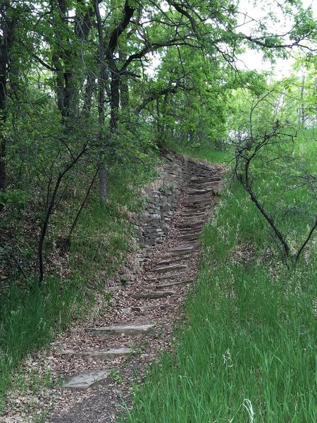 Two sets of steep stairs on the North Earthlodge Connector Trail make a great place to get in some training!
