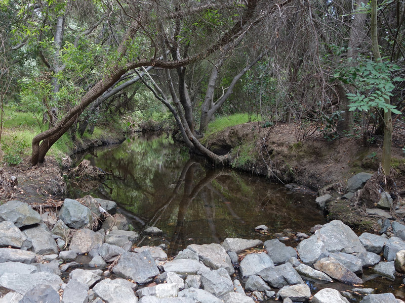 Navigate this rocky stream crossing in Tecolote Canyon.