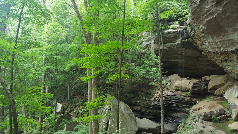 Anglin Falls is just beautiful in the spring.