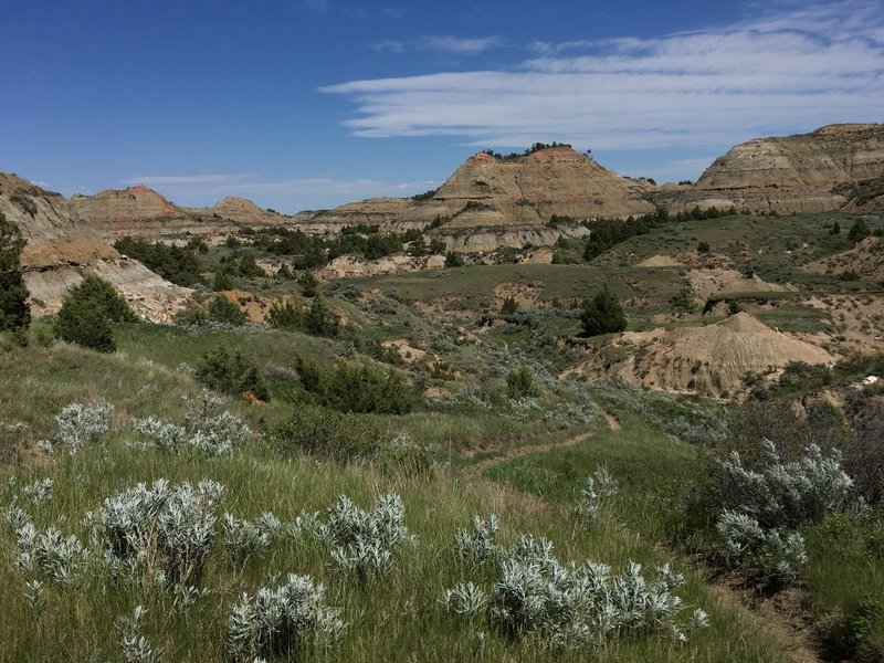 The Painted Canyon Trail is worth checking out in Theodore Roosevelt National Park.