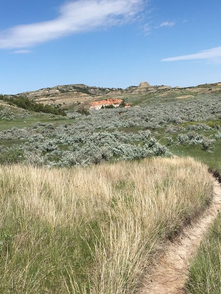 Hop on the Painted Canyon Trail for fantastic views of Theodore Roosevelt National Park.