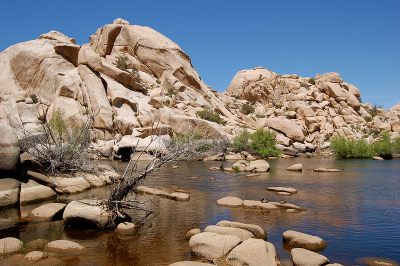 Boulders rise out of the water behind the Barker Dam.