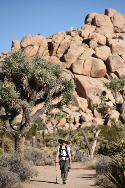 A well-shaded visitor travels along the Barker Dam Nature Trail. Photo credit: NPS/Brad Sutton.